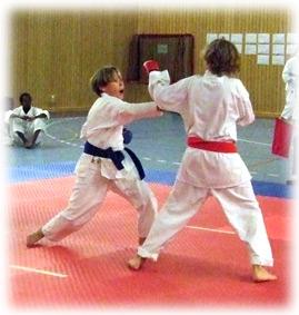karate bälten färg